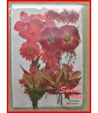 ดอกไม้แห้งตกแต่งจากธรรมชาติDiy(แบบที่7)