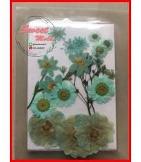 ดอกไม้แห้งตกแต่งจากธรรมชาติDiy(แบบที่9)