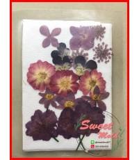 ดอกไม้แห้งตกแต่งจากธรรมชาติDiy(แบบที่10)