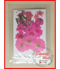 ดอกไม้แห้งตกแต่งจากธรรมชาติDiy(แบบที่14)