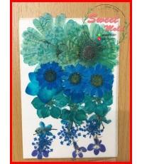 ดอกไม้แห้งตกแต่งจากธรรมชาติDiy(แบบที่16)