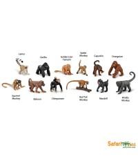 Safari Ltd. : SFR 680604* โมเดลสัตว์แบบแพ็คหลอด Monkeys  Apes