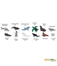 Safari Ltd. : SFR680704* โมเดลสัตว์แบบแพ็คหลอด Baby Sea life