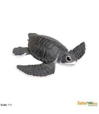 SFR 268129:Sea Turtle Baby
