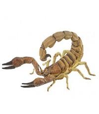 PPO 50209* : Scorpion