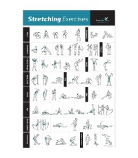 NewMe Fitness : NMF6678563* โปสเตอร์ท่าออกกำลัง Stretching Exercise Poster