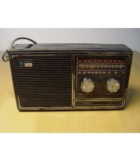 TANIN วิทยุธานินทร์ T-100