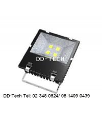 LED Floodlight Bridgelux chip + Meanwell Driver