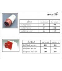 เพาเวอร์ปลั๊ก (Industrial Plugs Sockets), ซ้อกเกท (SOCKET)
