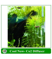 Cool Now CO2 Diffuser ตัวช่วยกระจาย CO2