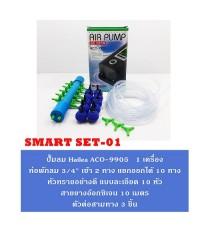 ชุดปั๊มลม Hailea ACO-9905 พร้อมอุปกรณ์ Smart Set 01