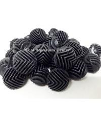 Mini Bioball ไบโอบอลลูกเล็ก สีดำ 100 ลูก สำหรับช่องกรองน้ำขนาดเล็ก, กรองในตู้, กรองบนตู้