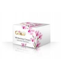 กล่องครีม Gina
