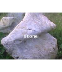 ก้อนหิน