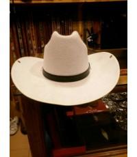 หมวกคาวบอบ