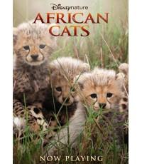 Disney Nature: African Cats ยอดนักล่าแห่งแอฟริกา (DVD 1 แผ่น) พากย์+ซับ 2 ภาษา ไทย,อังกฤษ