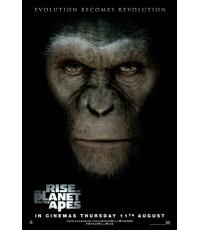 Rise of the Planet of the Apes - กำเนิดพิภพวานร  (1 DVD)  เลือกภาษาได้