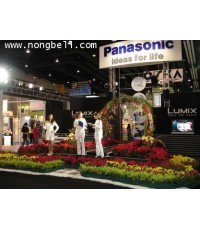 ภาพการตกแต่งบูธ  PANASONIC โดยร้านต้นไม้น้องเบลลในงาน Photo Fair 2006 ณ ไบเทคบางนา 8-11 ธันวาคม 2549