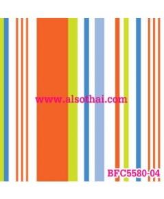 BFC5580-04