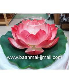 ดอกบัวบนใบบัวลอยน้ำดอกใหญ่มีครอบแก้วเทียน