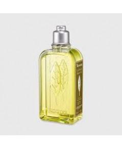 L \' Occitane Verbena Shower Gel 250ml. เจลอาบน้ำดอกเวอร์บีน่าจากโพรว็องซ์