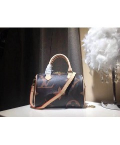 Louis Vuitton Geant speedy Bag 25