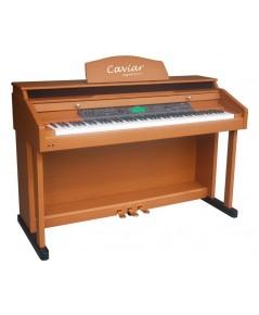 CAVIAR TG8834 ELECTRIC PIANO