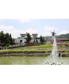 โปรแกรมทัวร์,แพ็คเกจทัวร์,Outing,ท่องเที่ยว,สัมมนา,ศึกษาดูงาน,วังน้ำเขียว,Wang Nam Kheaw