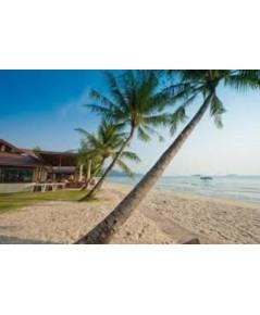 โปรแกรมท่องเที่ยว,โปรแกรมเที่ยว,เกาะช้าง, Koh Chang,ตราด,ดำน้ำดูปะการังหมู่เกาะรัง,เกาะโล้น