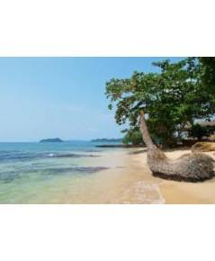 โปรแกรมทัวร์,แพ็คเกจทัวร์,เกาะหมาก,ตราด,เกาะกระดาด,อ่าวตุ่ม,เกาะกระ,เกาะยักษ์,เกาะรัง