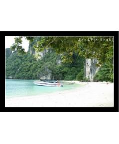 นำเที่ยวเกาะห้อง โดยเรือสปีดโบ๊ท
