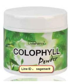 COLOPHYLL / โคโลฟิลล์