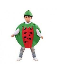 ชุดแฟนซีเด็ก ชุดแตงโม ชุดผลไม้ ชุดเด็ก ชุดการแสดง ทำจากผ้าใยสำลี ขนาด 60x60 ซ.ม. fruit suit