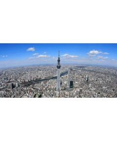 ทัวร์โตเกียว ฟูจิ ลานสกี YETI SKI RESORT  5วัน 3คืน TZ   // ราคา 27,999 บาท //