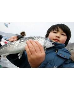 ทัวร์เกาหลี เทศกาลตกปลาน้ำแข็ง Hwacheon Ice Fishing Festival 4วัน 3 คืน XJ //ราคา 15,900 บาท //