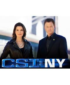 CSI New York Season 9 ไขคดีปริศนานิวยอร์ค ปี 9 ดีวีดี พากย์ไทย-บรรยายไทย 5 แผ่นจบ*master
