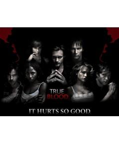 True Blood season 3 / ทรูบลัด แวมไพร์พันธุ์ใหม่ ปี 3 (DVD พากย์ไทย) 2 แผ่นจบ*master