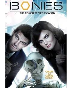 Bones Season 6 โบนส์ พลิกซากปมมรณะ ปี 6 DVD บรรยายไทย 6 แผ่นจบ