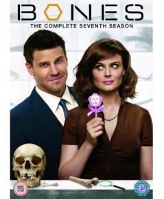 Bones Season 7 โบนส์ พลิกซากปมมรณะ ปี 7 ดีวีดี บรรยายไทย 3 แผ่นจบ*master