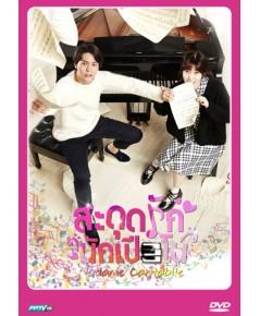 nodame cantabile สะดุดรักนักเปียโน DVD พากย์ไทย 4 แผ่นจบ