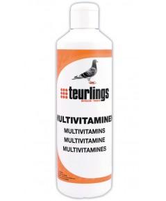 Teurlings ทูริ่ง วิตามินรวมชนิดน้ำเข้มข้น สามารถดูดซึมเข้าสู่ร่างกาย ได้อย่างรวดเร็ว บรรจุ 400 ml.