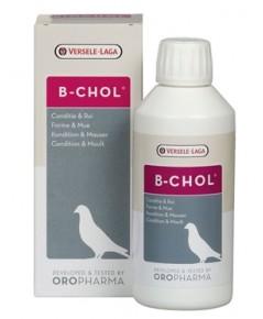B-chol บำรุงตับ กระตุ้นการผลัดขน ลดอาการบอบช้ำ บรรจุ 500 ml.