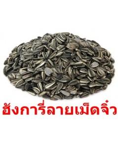 ทานตะวันฮังการี่เอเชีย เม็ดจิ๋ว นำไปเพราะงอกรับประทานได้ เนื้อเต็ม ไม่ลีบ ไม่แบน ไม่ฝ่อ บรรจุ 30 K.G