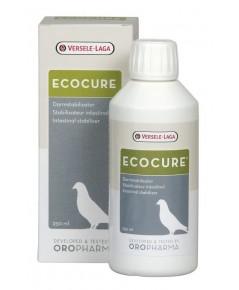 Ecocure สกัดจากสมุนไพรธรรมชาติ เสริมระบบทางเดินอาหาร สำหรับสัตว์ปีกทุกชนิด บรรจุ 250 ml.