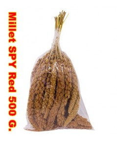 มิลเล็ทสเปร์แดง เกรด A สินค้านำเข้าจากประเทศอิตาลี่ บรรจุ 500 กรัม