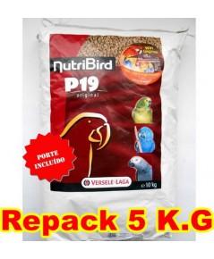 P19 อาหารนกแก้ว ใหญ่-กลาง สูตรเตรียมความพร้อม ก่อนเข้าคู่ผสมพันธุ์ และผลัดขน แบ่งจำหน่าย 5 KG.