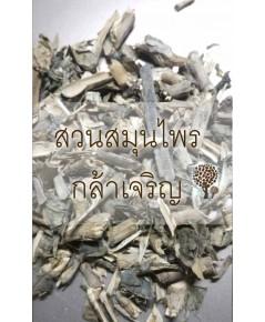เหงือกปลาหมอ (ทั้ง5) 1 กิโล
