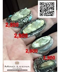 แหวนหางกระเบนท้องน้ำหรือหัวกระเบนทองน้ำหรือโรนิน ทางร้านมีใบอนุญาตขายหัวกระเบนหรือโรนิน