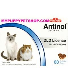 Vetz Petz Antinol CAT  วิตามินบำรุงข้อต่อ ข้อกระดูก ลดปวดข้ออักเสบ สำหรับแมว (กล่อง 60 เม็ด)