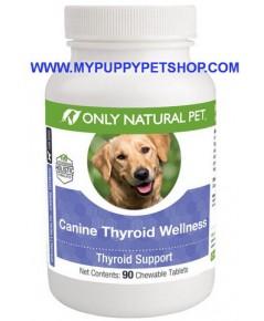 Thyroid Wellness รักษาภาวะฮอร์โมนต่ำ ขนร่วง บำรุงสุขภาพโดยรวม ปรับฮอร์โมนสมดุล USA (90 เม็ด)